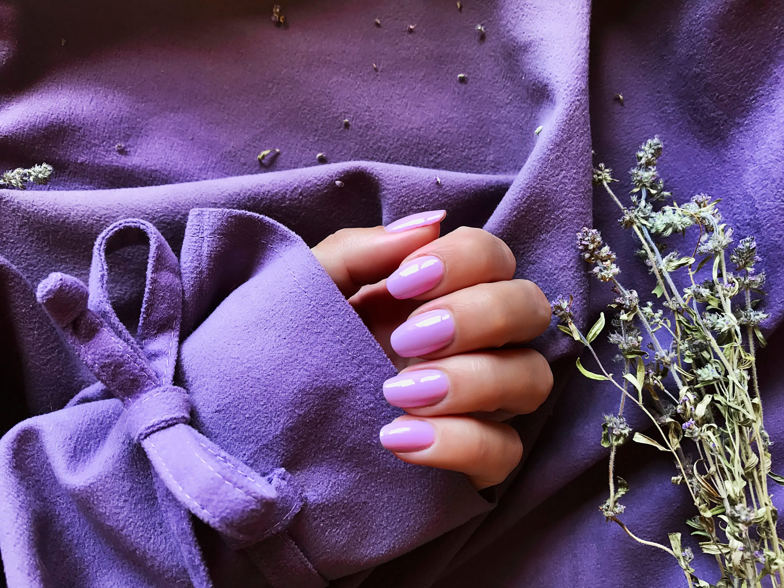 purple-manicure-hand-woman-beauty-care-spa-day-spa-7ZTQGVD
